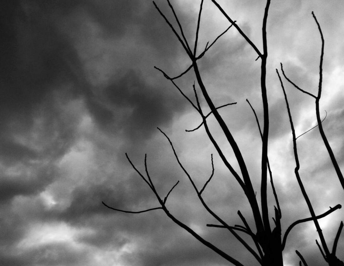 fabrizzio ciel gris